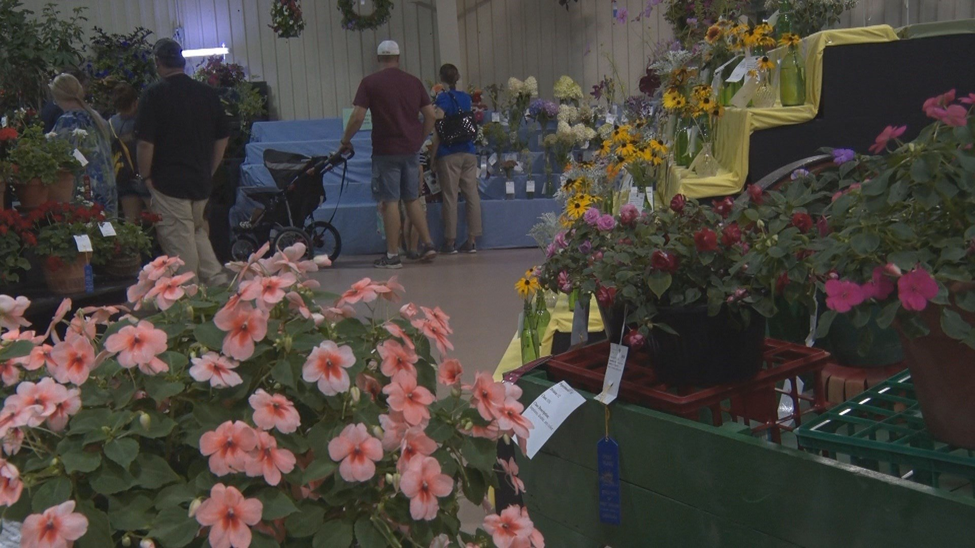 Flowers brighten up the showroom floor inside the West Virginia Building at the State Fair of West Virginia.